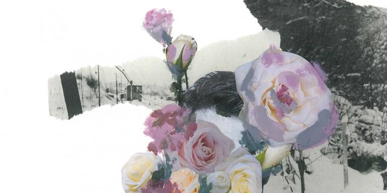 Illustration fleurs